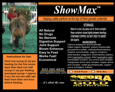 SGN ShowMax - Kelli and Lisa